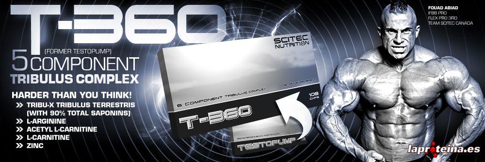 t-360_en_20130131125940