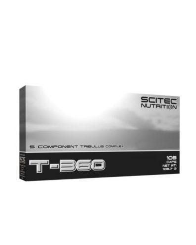 400x500 t-360